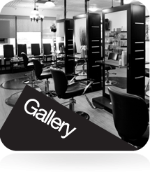 Red deer salon bangs co salon professionals in for 50th avenue salon
